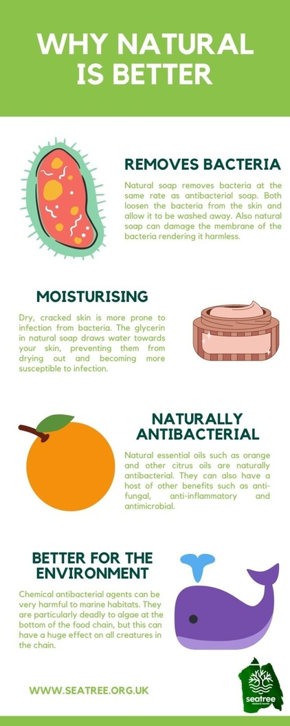 why natural soap is better than chemical antibacterial soap infographic