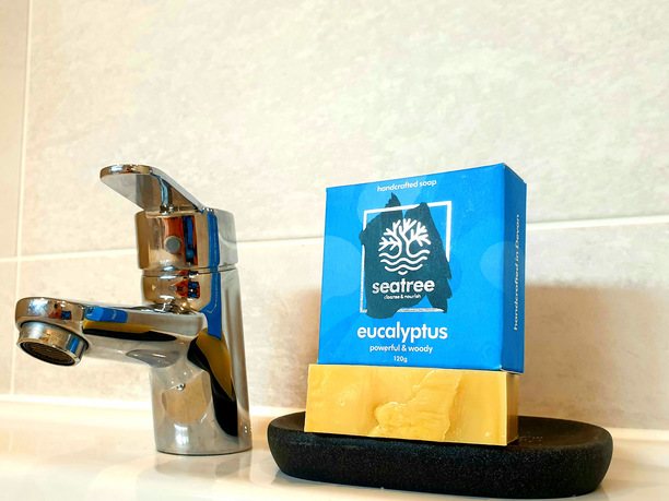 eucalyptus natural soap