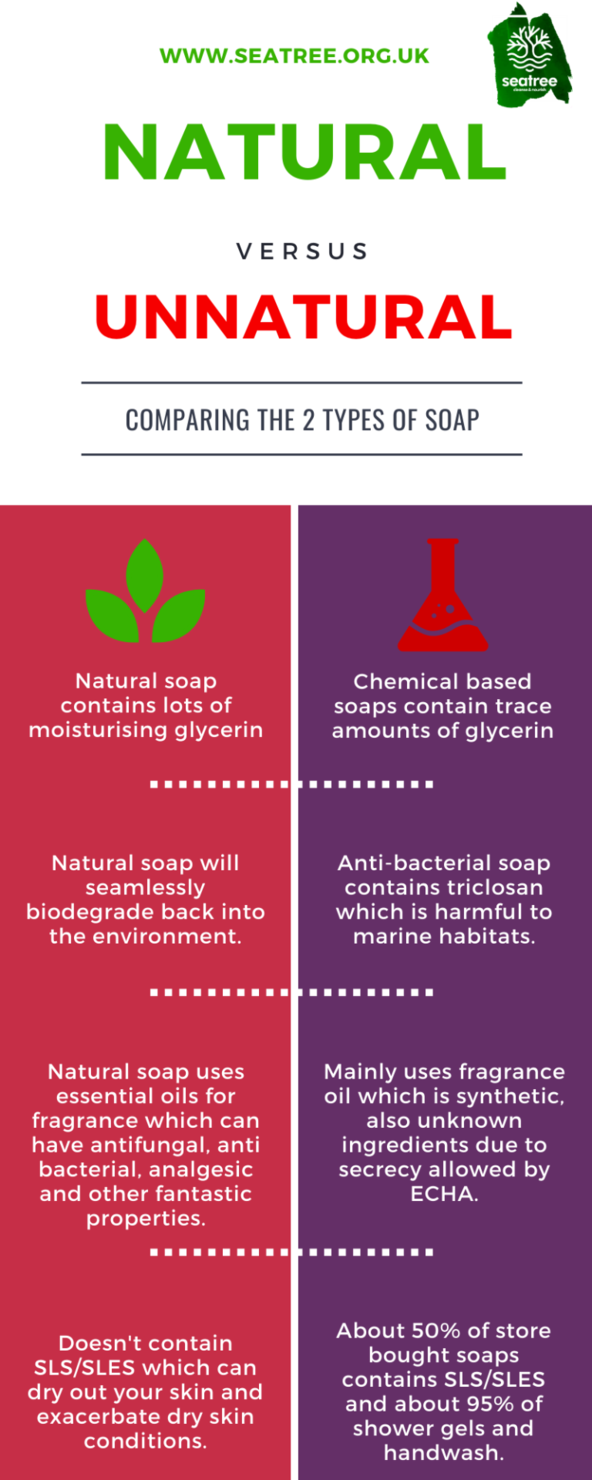 Seatree Cosmetics Why choose natural infographic